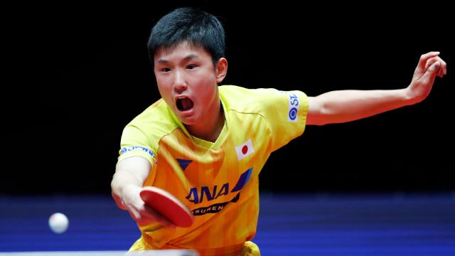 国际乒联盛赞张本智和!称其为新标杆