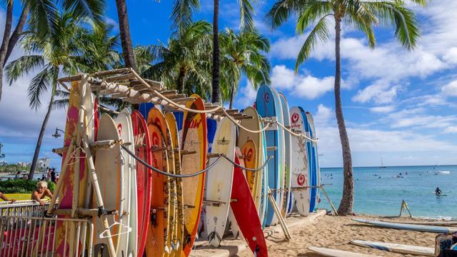 索尼公开赛前瞻:夏威夷全勤